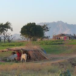 Village de Rohua
