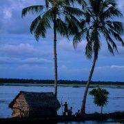 La vérité des backwaters au kerala